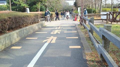 若洲海浜公園サイクリングコース4