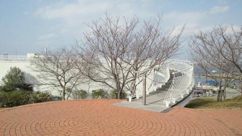 若洲海浜公園サイクリングコース29