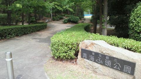 青海中央ふ頭公園1