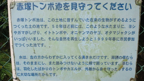 NEC_0108