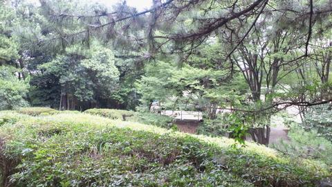 青海中央ふ頭公園6