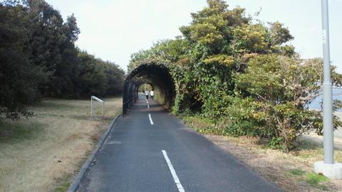 若洲海浜公園サイクリングコース15