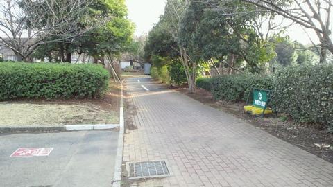 若洲海浜公園サイクリングコース3