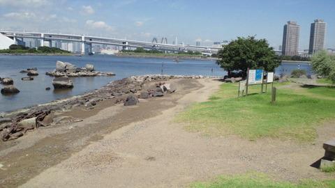 お台場海浜公園10