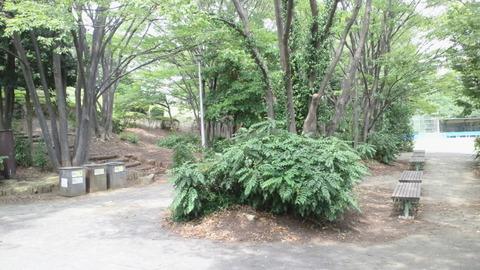 青海中央ふ頭公園2