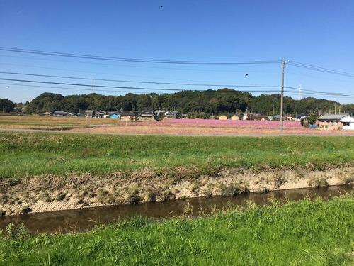 2015-11-06 豊田でサイクリング 002_Ed01