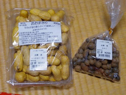 DSCN2883_4325rakkasei_Ed02