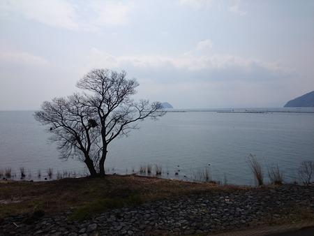紅鮎 長浜 (21)