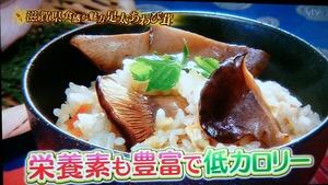 あわび茸 滋賀県足太あわび茸 青空レストラン (4)