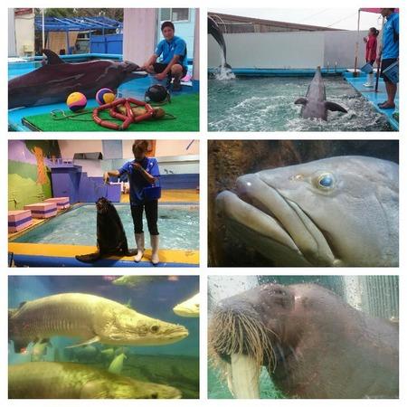 二見ヶ浦水族館
