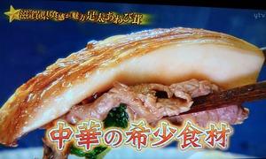 あわび茸 滋賀県足太あわび茸 青空レストラン (3)