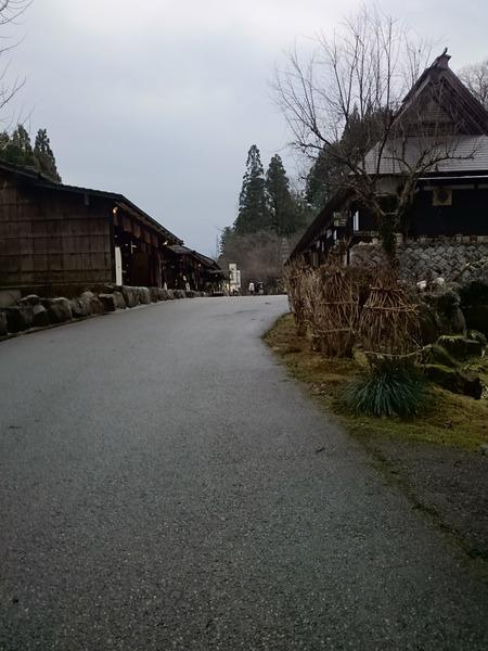 ゆのくにの森 (12)
