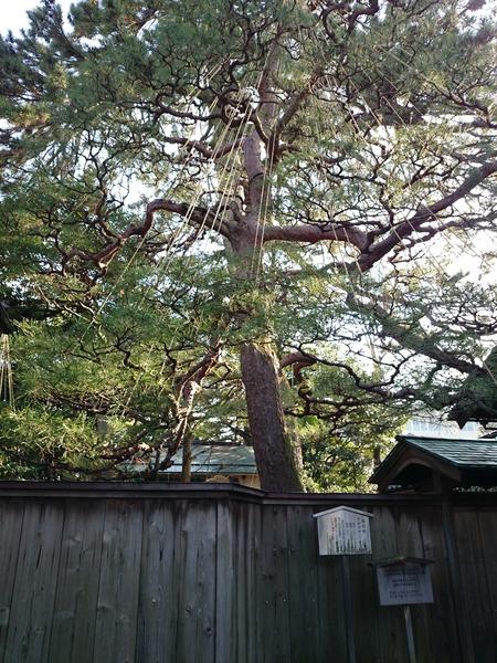 金沢 武家屋敷跡 (14)