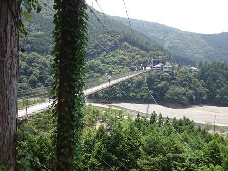 谷瀬の吊り橋 十津川村 (7)