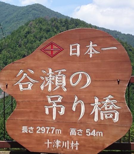 谷瀬の吊り橋 十津川村 (12)