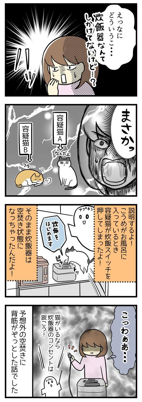 「??どういうこと?炊飯なんて仕掛けてないけど・・・」次の瞬間ハッとしました。まさか猫が!?どうやら飼い主が風呂に入っている間に容疑猫AかBが炊飯器の炊飯ボタンを押してしまったようです!予想外の空焚きに背筋がぞっとした話でした・・・