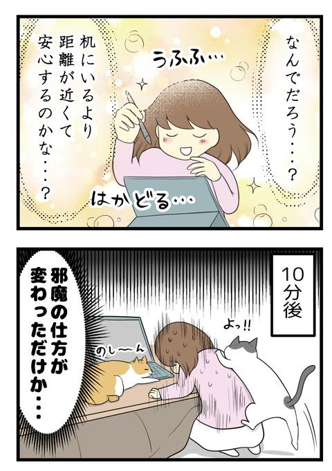 なんでだろう?机にいるよりも距離が近くて安心するのかな・・・?そして10分後、猫が背中に昇るしパソコンの上にも乗るし、邪魔の仕方が変わっただけでした☆
