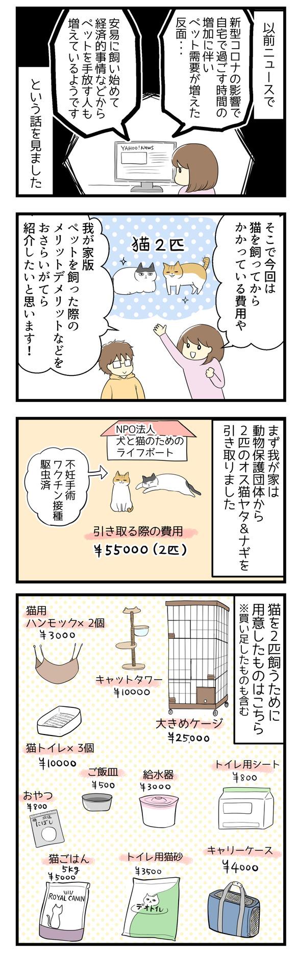 以前ニュースで、新型コロナの影響で在宅時間が増えたためペット需要が高まった反面経済的理由などで安易に手放す人も増えているという話を見ました。そこで今回は我が家版猫を飼ってからかかっている費用などをおさらいがてら描いてみることにしました!我が家は動物愛護団体から兄弟猫2匹(ヤタとナギ)を引き取りました