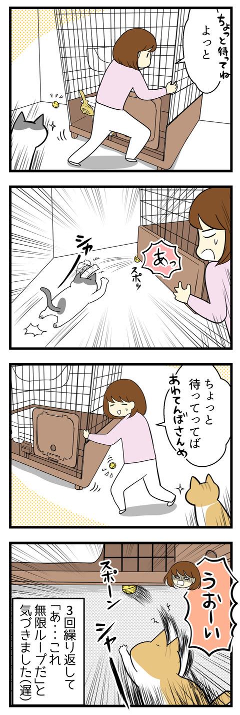 でもすぐにケージの下にボールを入れてしまうので、重いケージを動かして取ってあげてもまたすぐに猫がじゃれて再びケージの下へボールが・・・!ああ無限ループ!