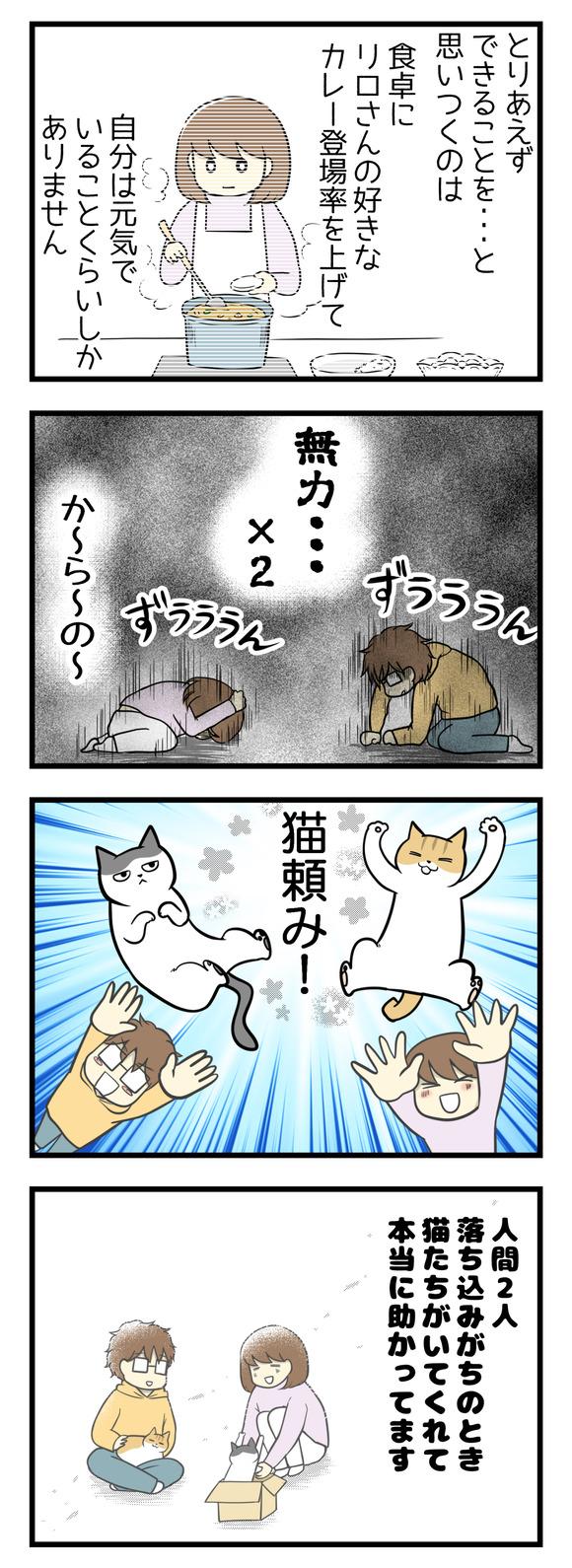 とりあえず自分にできることは、食卓にリロさんの好きなカレーの登場率をあげること、自分はなるべく元気でいることくらい。無力×2からの・・・猫頼み!人間2人落ち込みがちなときに猫たちがいてくれて本当に助かっています。