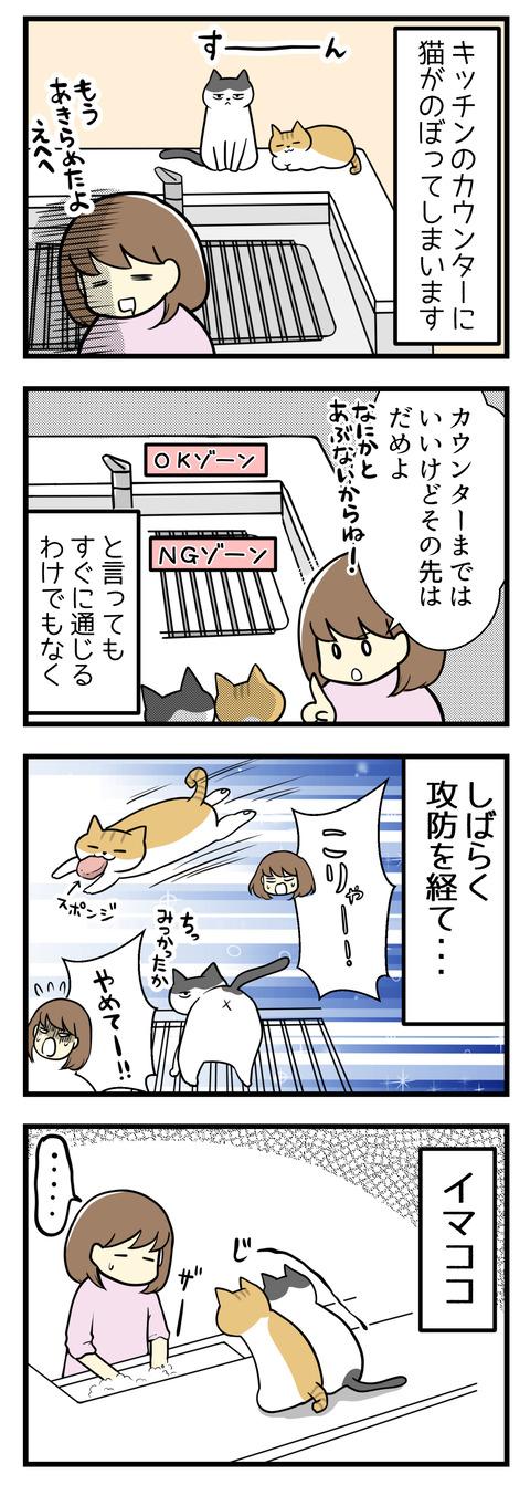 猫がキッチンカウンターにのぼってしまいます。もう構造上諦めているのですがそれでも最低限入っていいゾーンとNGゾーンは守ってほしい・・・とは言ってもすぐに通じるわけもなく。しばらく猫たちとの攻防が続きました。