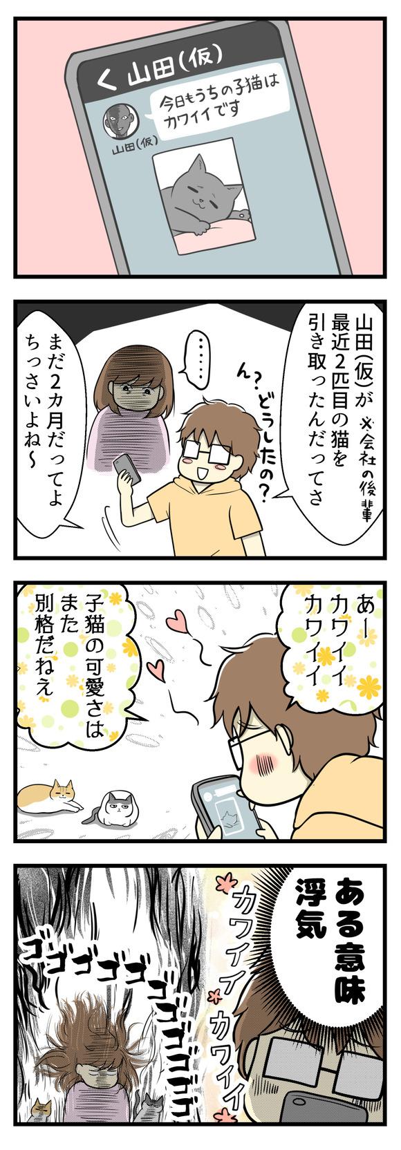 と思ってスマホを覗いたら夫の会社の同僚山田(仮)とのLINEでした。山田さんは最近2匹目となる子猫を迎えたんだそうです。その送られてきた子猫の写真を見て夫はニヤニヤしていたのでした。「ああカワイイカワイイ!子猫の可愛さは別格だねえ」とやたら褒めまくっていて、それはそれである意味浮気・・・!!