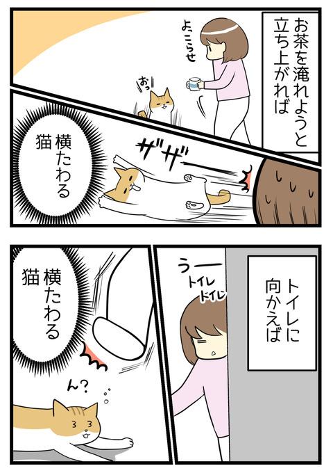 トイレに行こうと立ち上がれば足元に横たわる猫