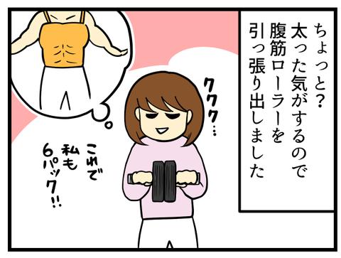 腹筋ローラー_1