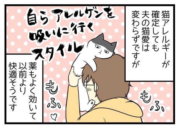 猫アレルギーが確定しても夫の猫愛は変わらずですが、薬がよく効いて以前よりも快適そうに過ごしています