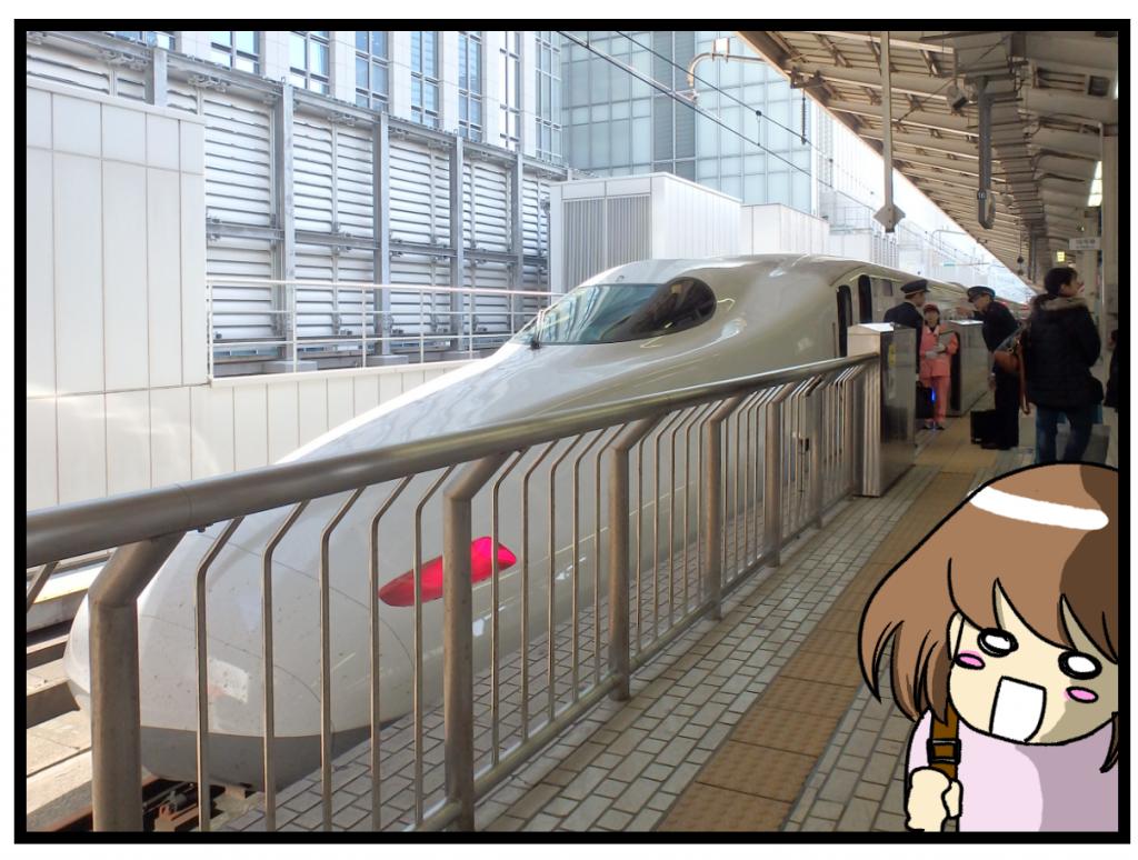 東京駅内で購入した駅弁の画像