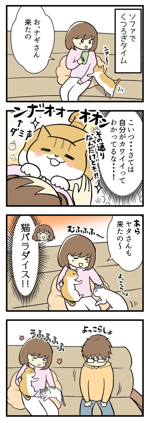 ソファでくつろぎタイム。まずは猫のナギが膝に乗ってきます。その後すぐヤタも来てあっという間に猫パラダイス!でもそんな時、夫が隣に座ると・・・