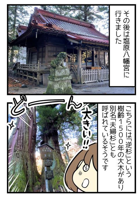 その後は塩原八幡宮へ行きました。ここには逆杉という樹齢1500年以上の大木があり別名夫婦杉とも呼ばれているそうです!