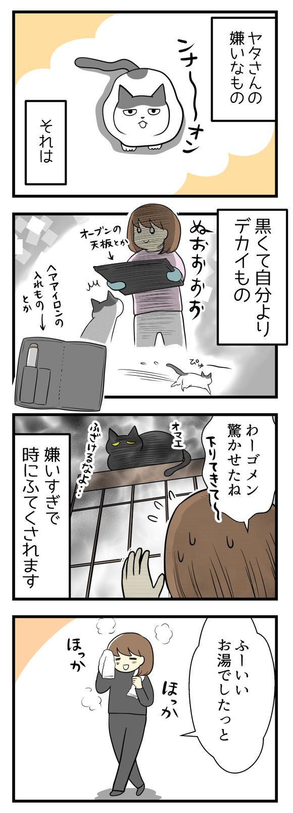 猫のヤタさんが嫌いなもの、それは黒くてデカイもの。オーブンの天板やヘアアイロンの入れ物が黒いので、それを見せるとすごい勢いで逃げていきます。嫌いすぎて時にふてくされてしまいます。ある日お風呂から出たところ