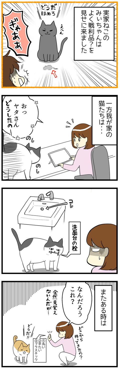 猫の不思議な戦利品漫画