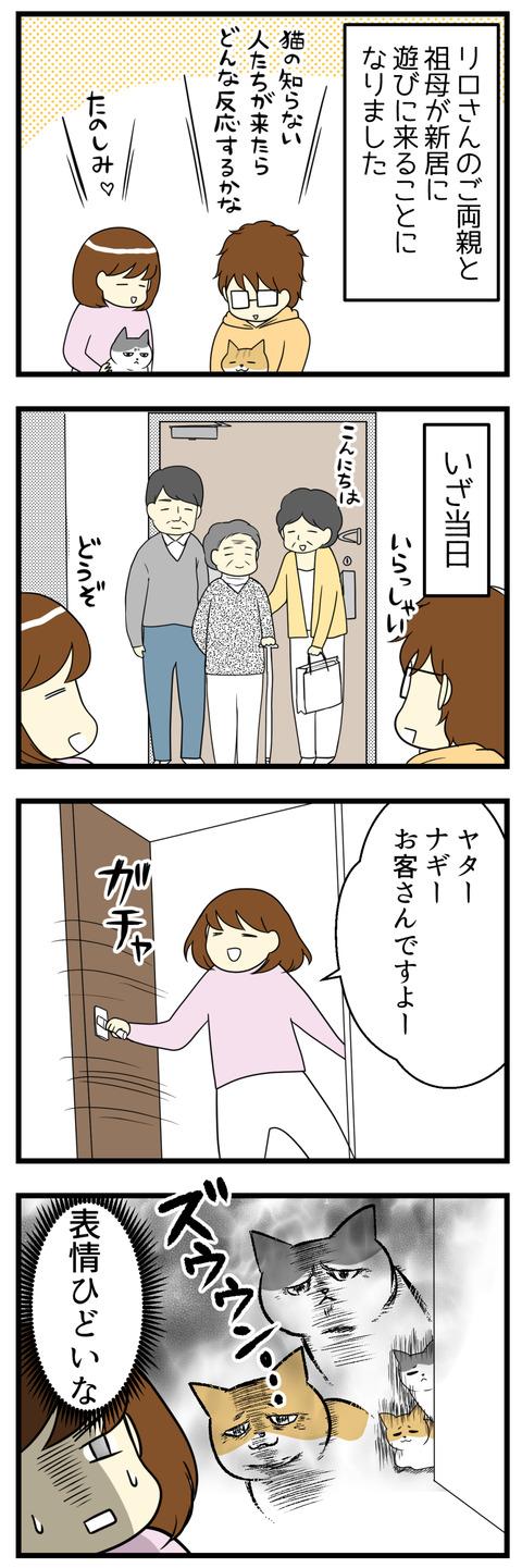 義両親と祖母が新居へ初めて遊びに来てくれました。猫たちは人見知り発動なのか変な表情でじっと固まっていました