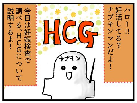 HCGについて補足説明_1