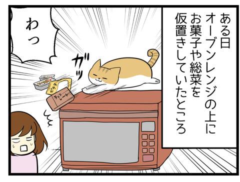 猫がオーブンレンジの上に置いてあった食べ物を落としました