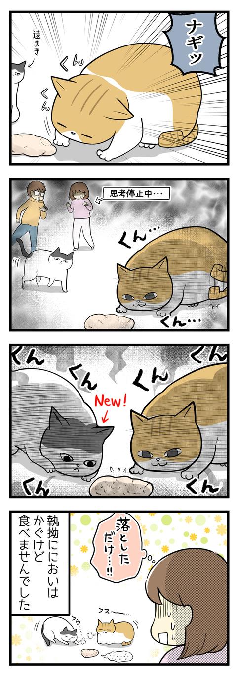 猫のナギが床でサラダチキンのにおいを執拗にかいでいました!そこにヤタも加わりさらに執拗に!でもにおいはかぐけれど食べませんでした。よかった。