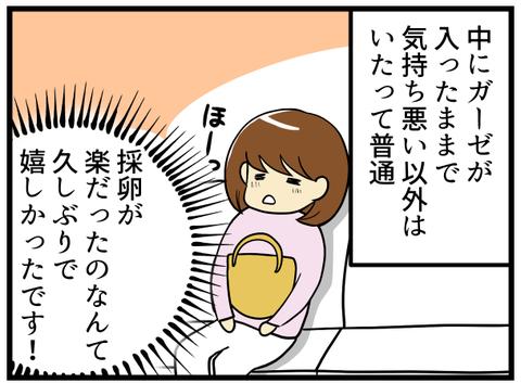 5回目の採卵日_-3-_3
