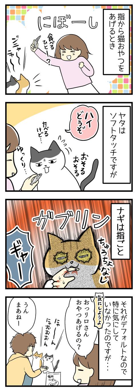 指から猫のおやつをあげるとき、ヤタはソフトタッチなのですがナギは指ごとガブリ!それがもうデフォルトなので特に気にしていなかったのですが、ある日夫が猫たちにおやつをあげようとしていた場面で