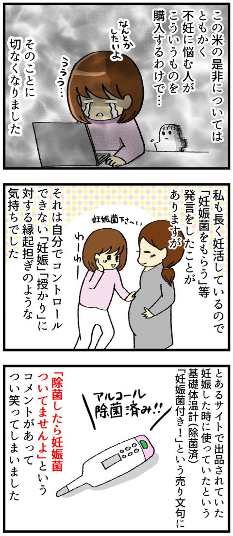 メルカリ妊娠米_2