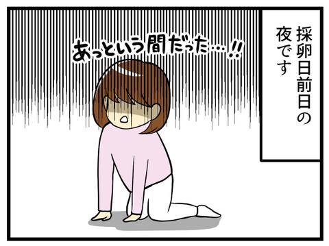 繊細全否定-採卵日前日ー_1