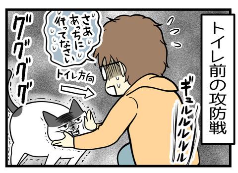 結局トイレ前で、トイレに入りたい猫と夫の攻防戦が繰り広げられます・・・