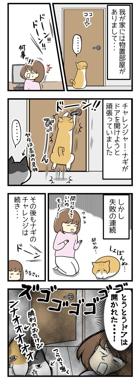 我が家には物置部屋があるのですが、猫のナギがドアノブに向かってジャンプして必死で開けようとチャレンジしていました。ずっと失敗の連続でしたがある日とうとうドアが開いた!!