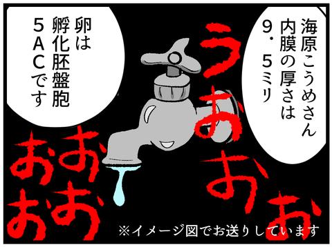 移植日本番ー出したくて震えるー2_4