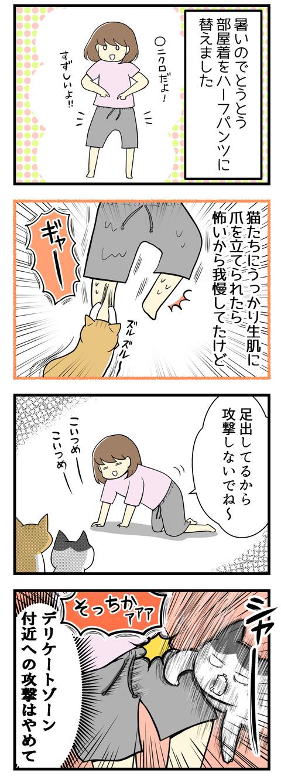 最近とても暑くなったのでとうとうハーフパンツに替えました。これまでは生足を出していると猫にうっかり爪を立てられたら大変だなと思って我慢していました。でも実際攻撃されるのは股の前でプラプラしているひもの方でした。デリケートゾーンが危ない!