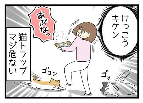 お盆でご飯を運んでいる最中でも足元に飛び出してきて横たわる猫トラップが危ない!