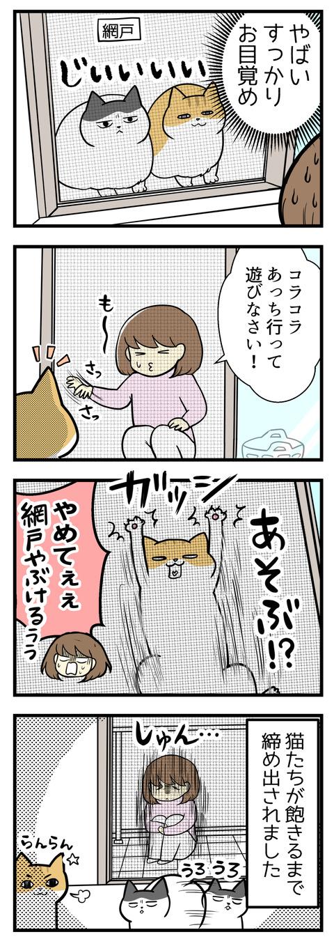 いつの間にか猫が起きていて網戸越しにこちらをじっと見ていました。あっちで遊んでなさいと追い払おうとしたら逆にじゃれて網戸に張り付く!猫が飽きるまでベランダに締め出されました