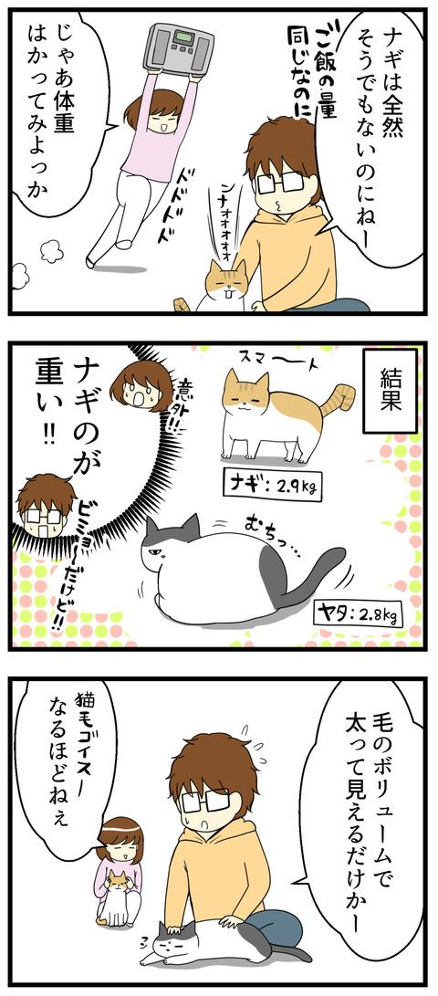 猫の抜け毛でギャップ漫画続き