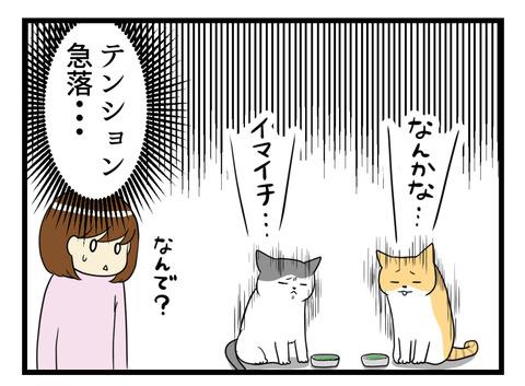なぜか猫のテンションがダダ下がり。なぜ?